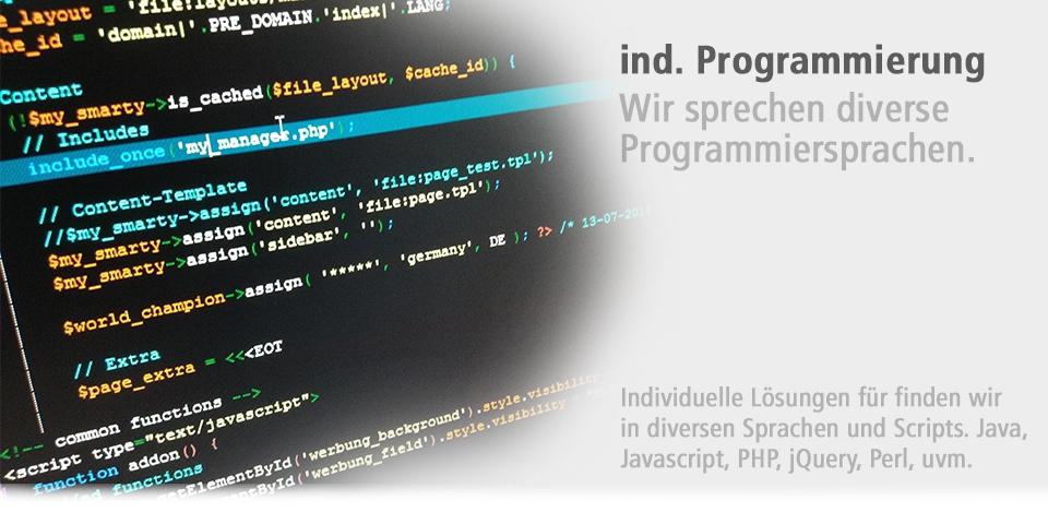 individuelle Programmierung / Webprogrammierung / Internetprogrammierung